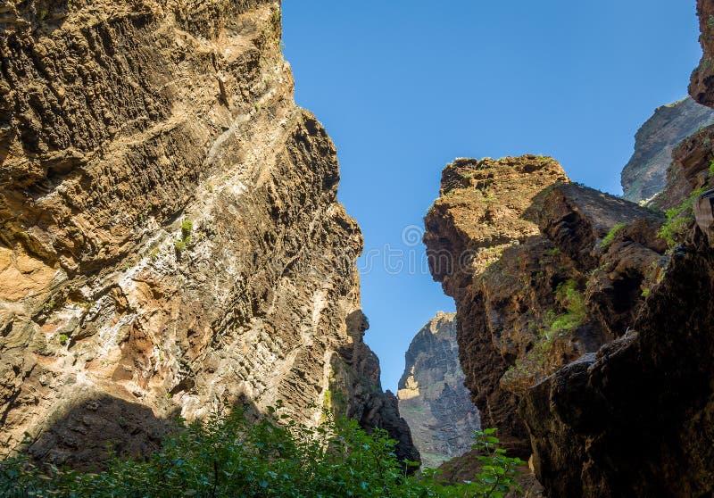 Höjdpunkten vaggar av den Masca ravin, Tenerife royaltyfria bilder