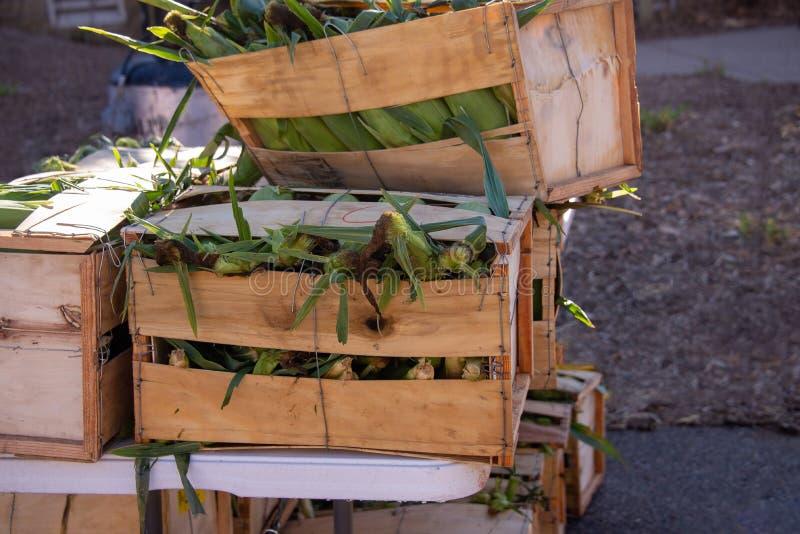 Hölzern stellt Mais her stockfotografie