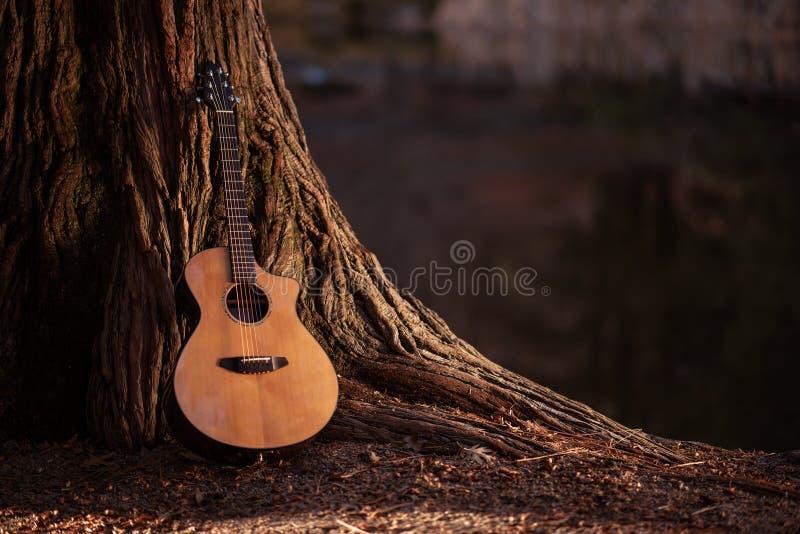 Hölzerne Akustikgitarre stockbilder
