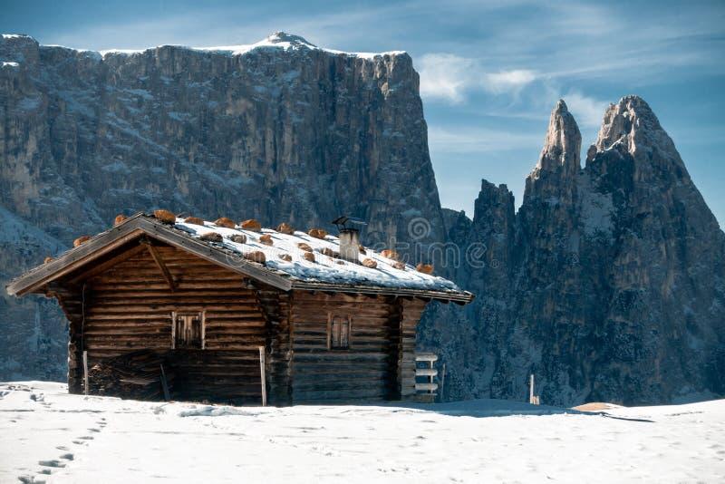 Hölzerne alpine Hütte stockbild