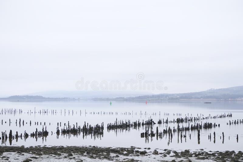Hölzerne Beitragsstangen im Meerwassersand für traditionellen Schiffbaubauholzteichspeicher errichten Schiffe und Fischen fisherm stockfoto