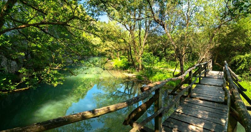Hölzerne Brücke über dem Fluss lizenzfreie stockfotografie