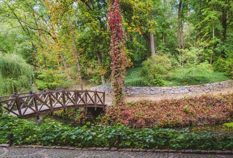 Hölzerne Brücke über dem Teich lizenzfreie stockbilder