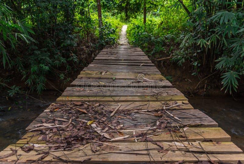 Hölzerne Brücke im Wald stockfoto