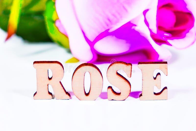 Hölzerne Buchstaben Rose lizenzfreie stockbilder