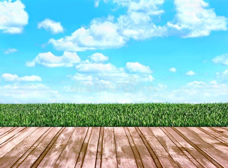 Hölzerne Dielen, die auf das Feld mit Gras gehen vektor abbildung