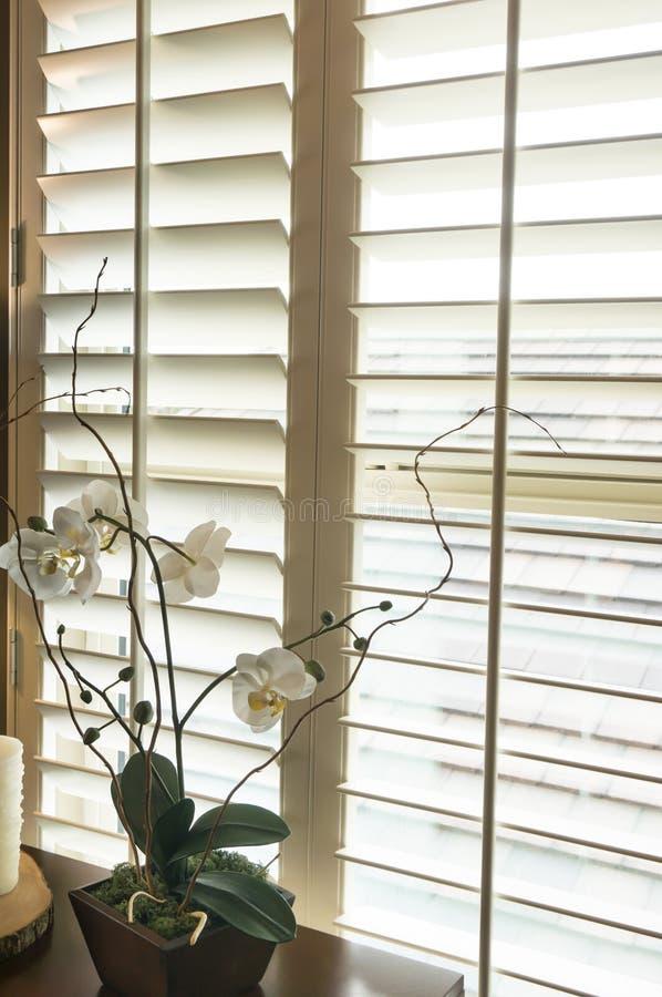 Hölzerne Fensterläden der Plantagenart im neuen Haus stockfotografie