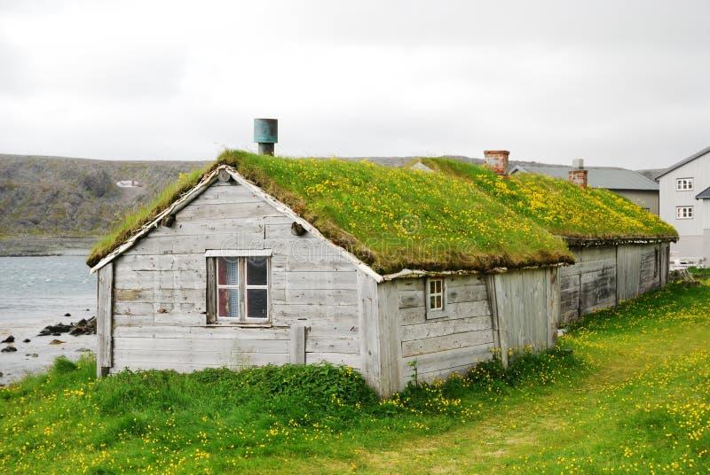 Hölzerne Häuser mit grünen Dächern in Hamningberg. stockfotos