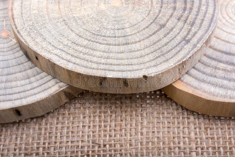 Hölzerne Klotz geschnitten in runde dünne Stücke vektor abbildung