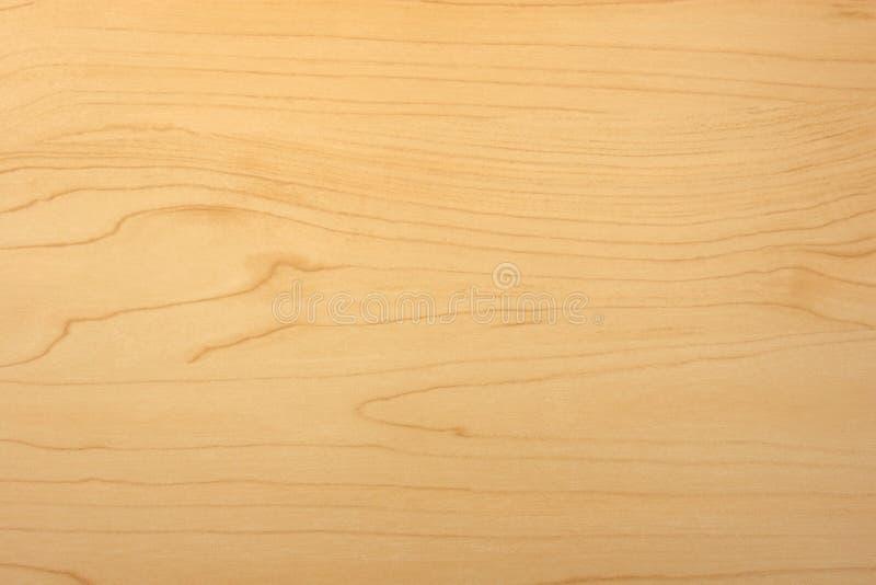 Hölzerne Kornbeschaffenheit des Ahornholzes stockbilder