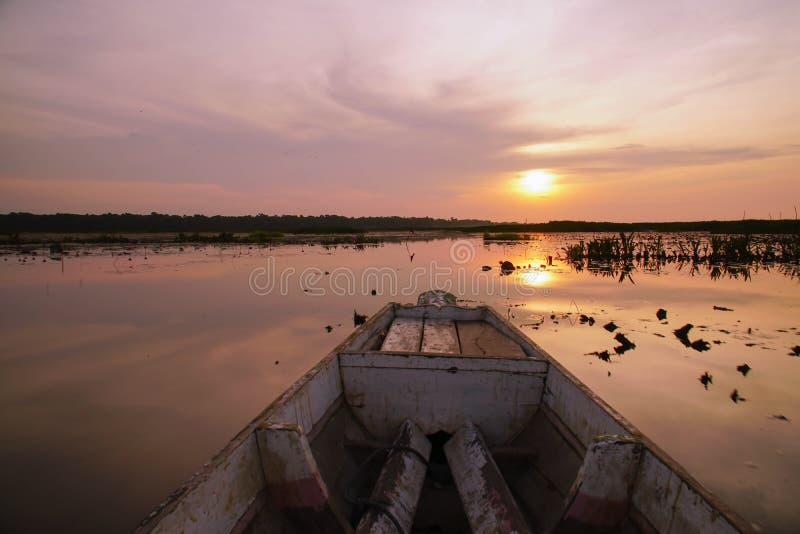 Hölzerne Longtail-Boots-Nase bei Sonnenaufgang Front View bei Thale Noi Waterfowl Reserve Lake, Thailand lizenzfreies stockfoto