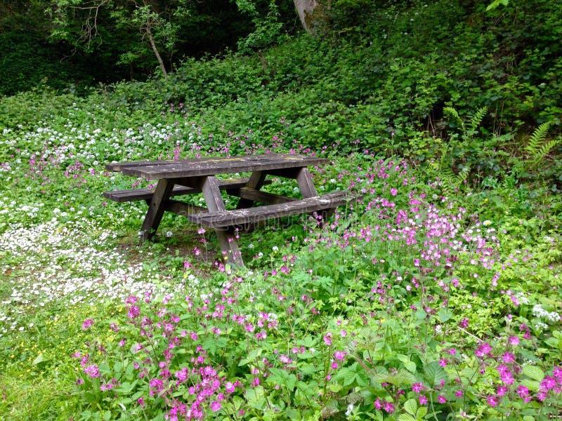 Hölzerne Picknick-Bank unter Waldblumen stockbilder