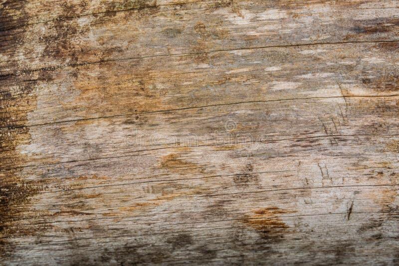 Hölzerne Plankenbeschaffenheit Wethered mit verkratzter Farbe lizenzfreies stockbild