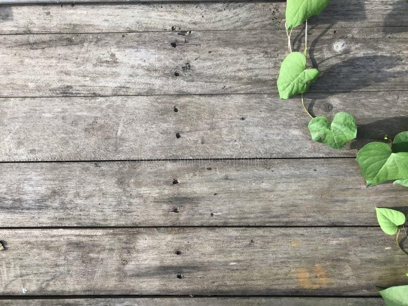 Hölzerne Plankenmusterbeschaffenheit mit grünem Blatthintergrund lizenzfreie stockfotos