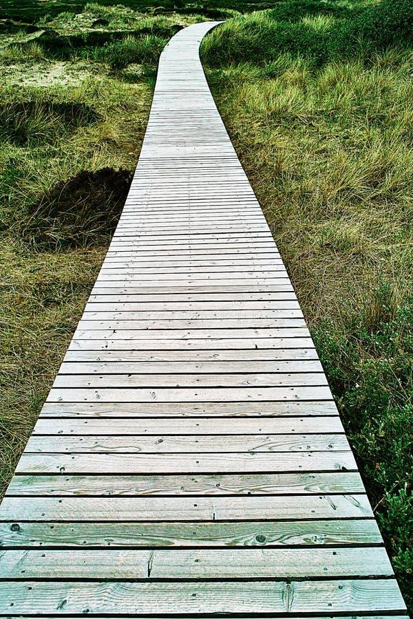 Hölzerne Promenade durch Dünen lizenzfreie stockfotografie