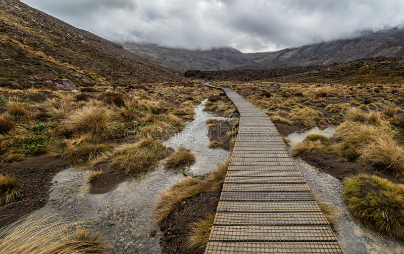 Hölzerne Promenade in Nationalpark Tongariro stockbild