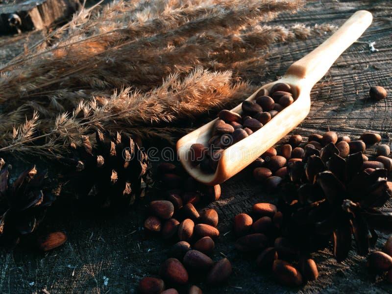 Hölzerne Schaufel, die Holzarbeit kocht stockfotos