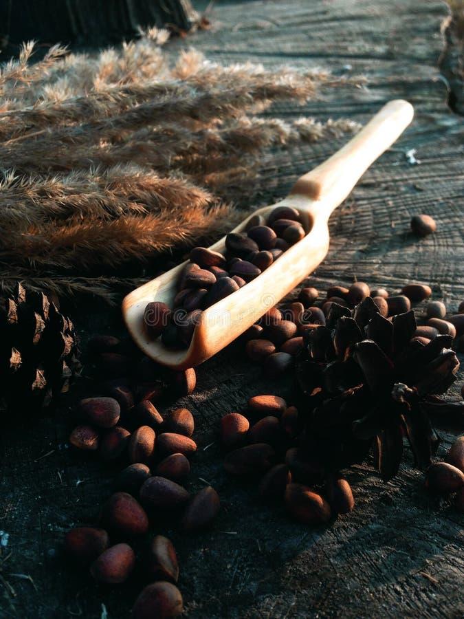 Hölzerne Schaufel, die Holzarbeit kocht stockbild