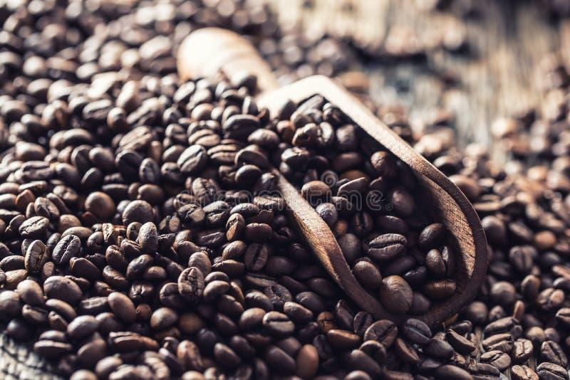 Hölzerne Schaufel voll von Kaffeebohnen auf altem eichenem Tisch stockfotografie