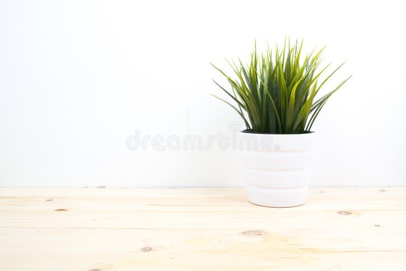 hölzerne Schreibtischtischplatte mit Baumtopf auf weißer Wand lizenzfreies stockbild
