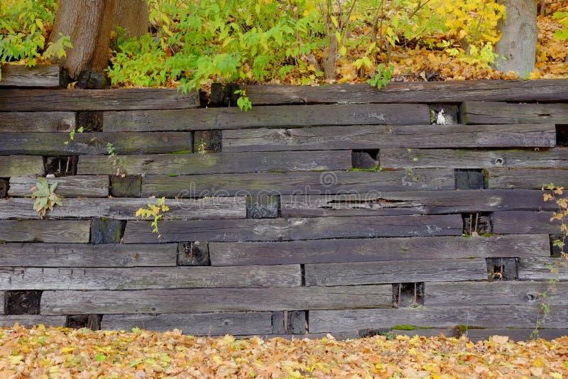 Hölzerne Stützmauer lizenzfreies stockbild