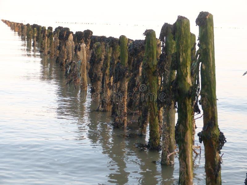 Hölzerne Struktur entlang Küste lizenzfreies stockfoto