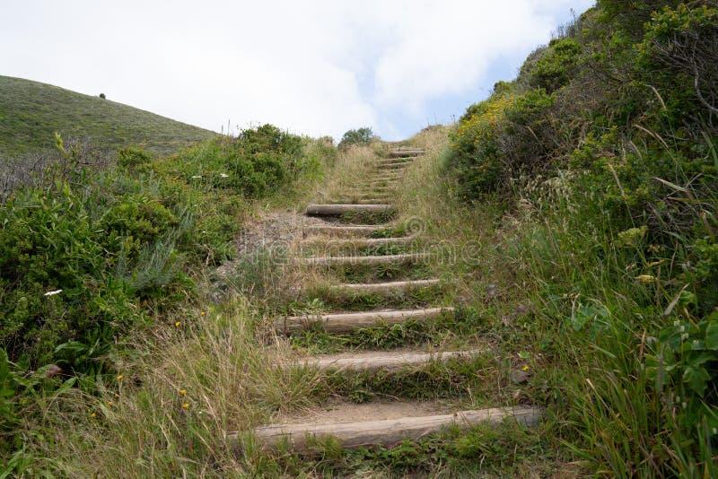 Hölzerne Treppe im Freien auf dem Schmutzwanderweg überlaufen mit der führenden Natur lizenzfreie stockfotos