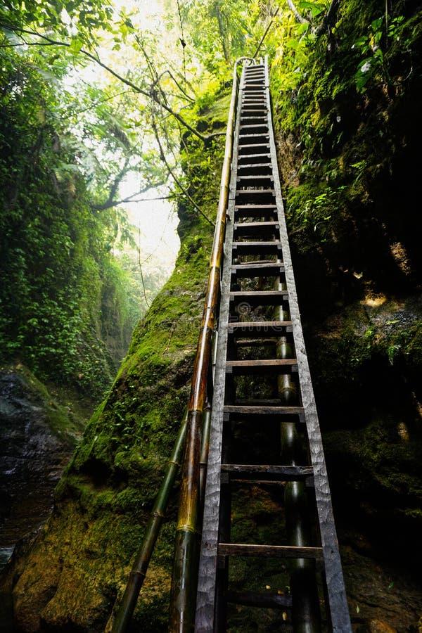 hölzerne Treppe nahe einem sehr schönen Wasserfall Halimun Salak Bogor stockfotografie