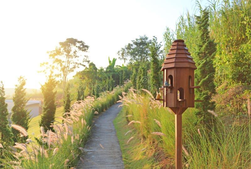 Hölzerne Vogelhäuser nahe Gehweg in getrockneter Rasenfläche bei Sonnenuntergang stockfotografie