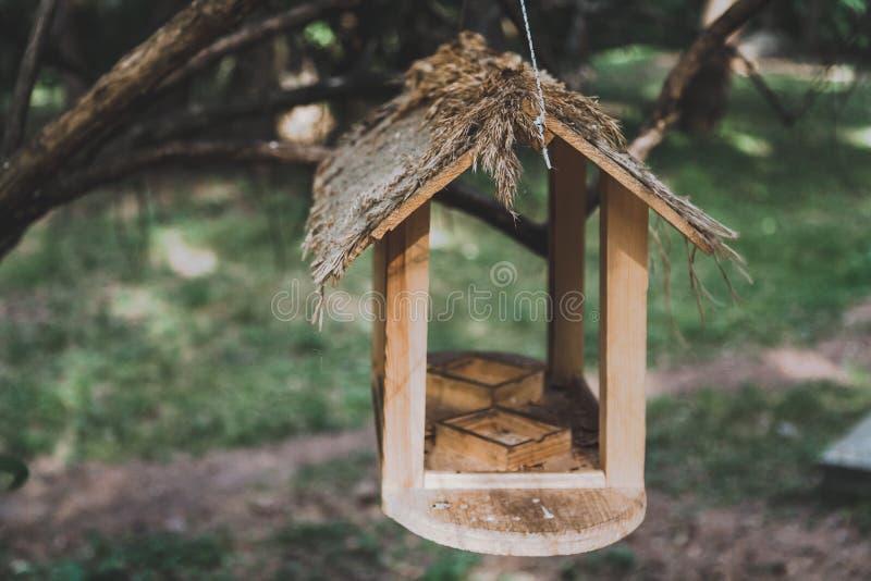Hölzerne Vogelzufuhr auf Niederlassung stockbilder