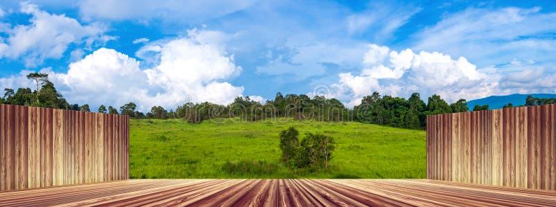 Hölzerne Wand und Boden leer mit frischem grünem Wald gegen Blau stockfoto