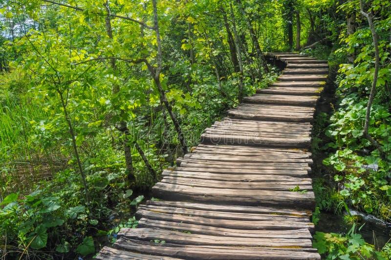 H?lzerne Wanderwege im Plitvice See-Nationalpark stockfotos