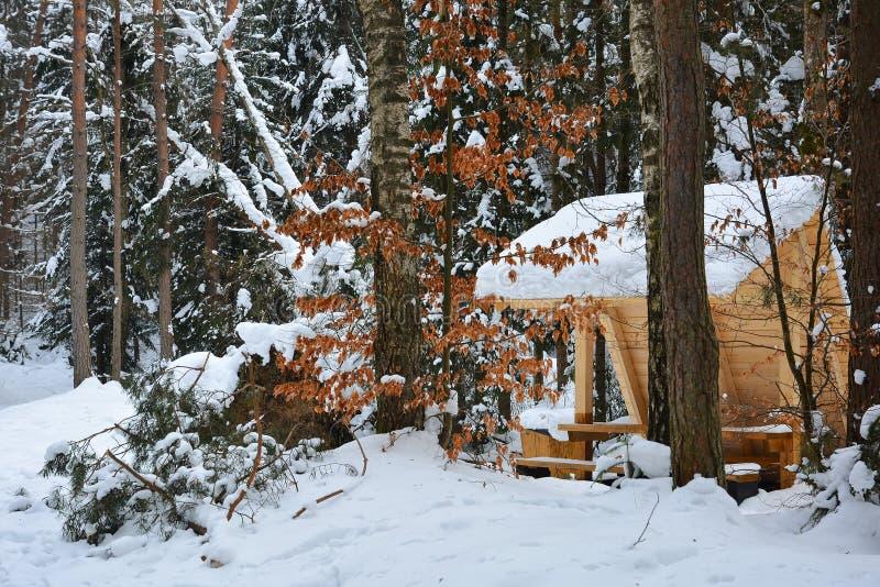 Hölzerner Gazebo im schneebedeckten Wald am eisigen Tag des Winters, hikin lizenzfreies stockbild