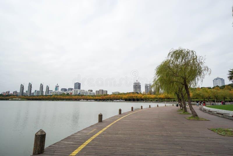 Hölzerner Gehweg am Flussufer im Park lizenzfreie stockbilder