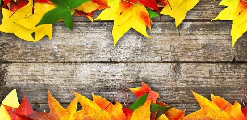 Hölzerner Herbsthintergrund für viele Anwendungen lizenzfreies stockfoto