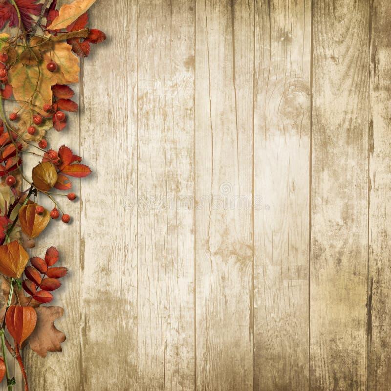 Hölzerner Hintergrund der Weinlese mit Herbsteberesche und -blättern stockfotografie