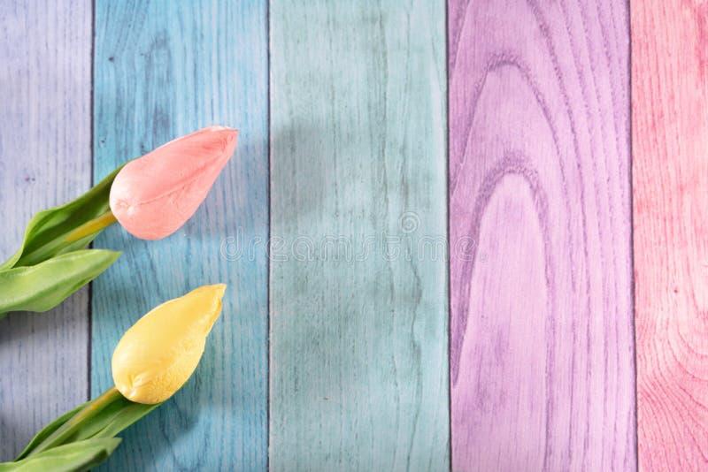 Hölzerner Hintergrund des Pastellregenbogens mit zwei Tulpen Rosa und Gelbes Raum für Kopie, nützlich für Frühling und Ostern-Pro stockfoto