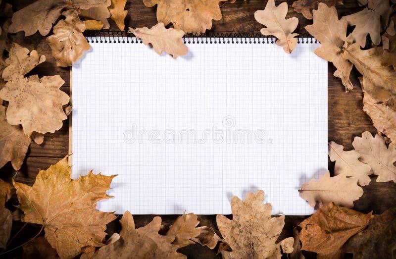 Hölzerner Hintergrund mit Blättern und Notizbuch lizenzfreie stockfotografie