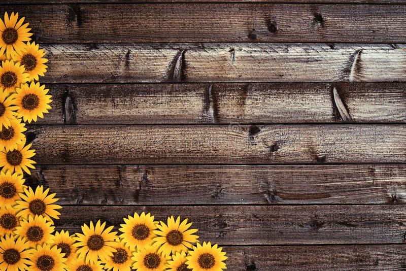 Hölzerner Hintergrund und Sonnenblumengrenze lizenzfreies stockbild