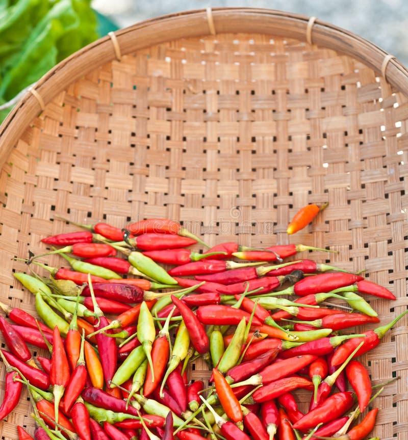 Hölzerner Korb von roten und grünen, frisch ausgewählten Jalapenopfeffern stockfoto