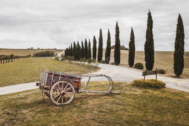 Hölzerner Pflug des alten traditionellen Handbuches Landwirtschaftliche Maschinen stockfotografie