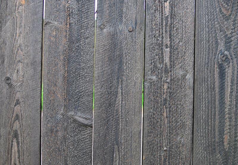 Hölzerner Plankenzaun lizenzfreie stockfotos