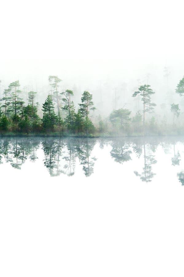 Hölzerner See mit steigendem Dampf von einer Wassertabelle lizenzfreies stockfoto
