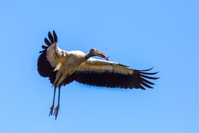 Hölzerner Storch im Flug stockfotografie