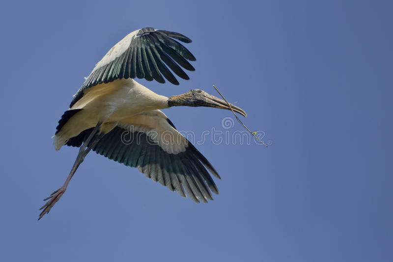 Hölzerner Storch im Flug mit Nestmaterial stockfotos