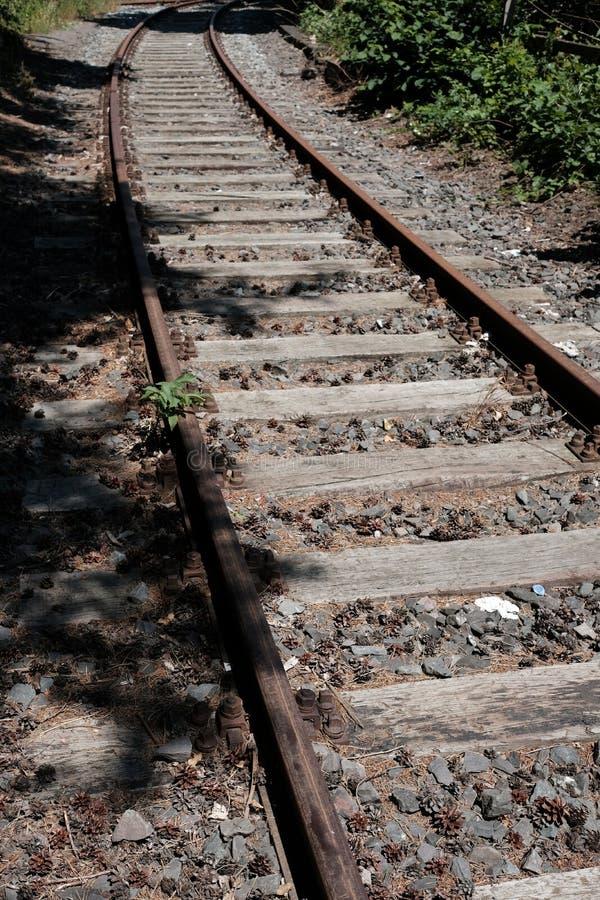 Hölzerner und Stahleisenbahnliniebau verlassen stockfotos