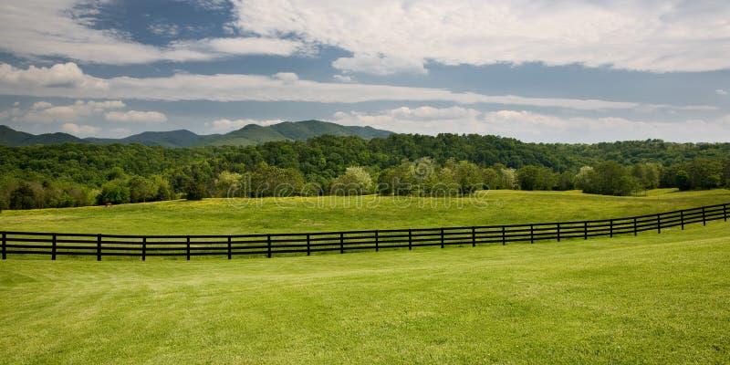 Hölzerner Zaun auf dem grünen Gebiet stockfoto