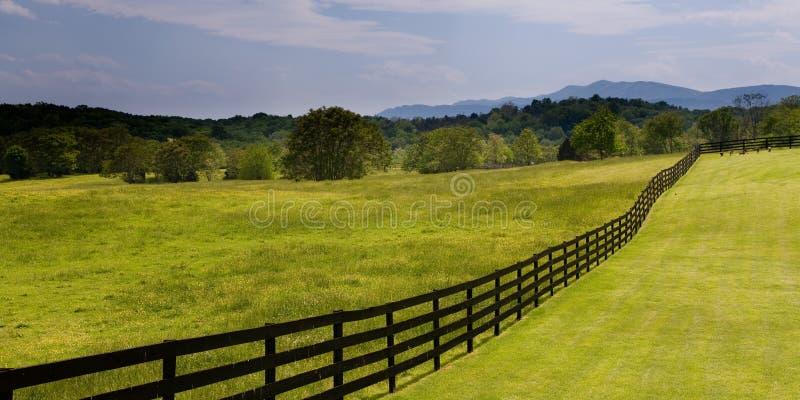 Hölzerner Zaun, der durch grünes Feld läuft lizenzfreies stockfoto