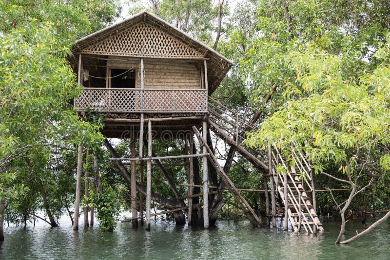 Hölzernes Baumhaus auf Fluss lizenzfreies stockfoto