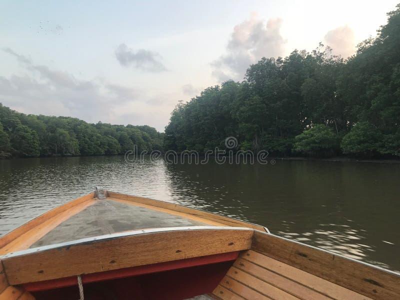 Hölzernes Boot auf einem ruhigen Fluss im Regenwaldgrünstreifen stockfotos